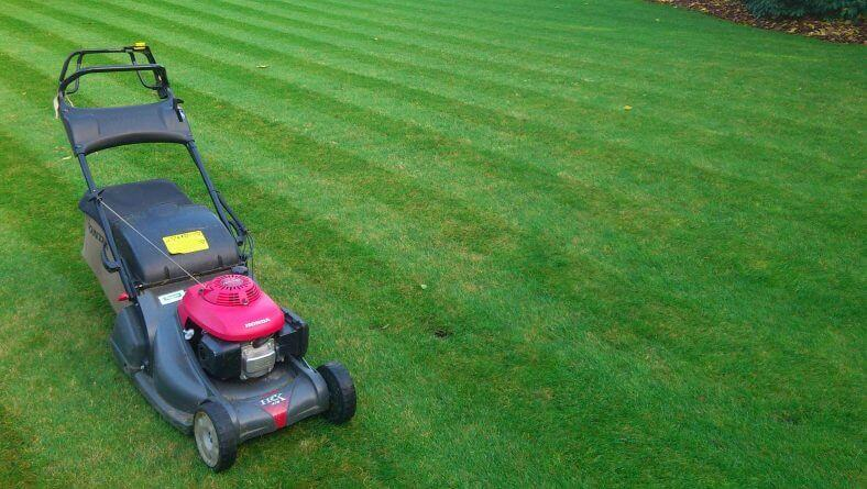 What To Look For When Choosing Lawn Mowing Service