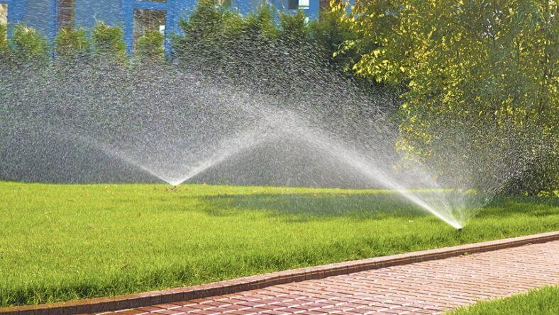 Why Should You Check Your Irrigation System This Summer