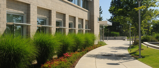 corporate landscaping adds color