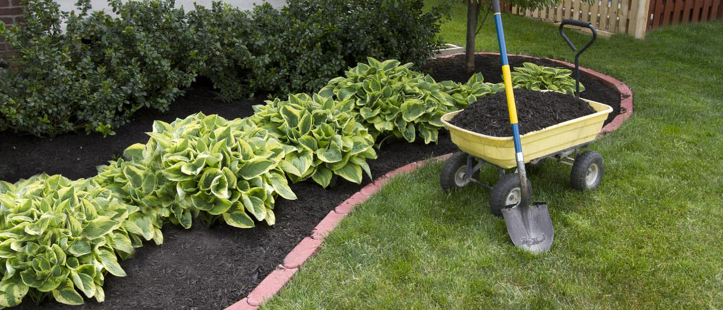 eliminate threats to landscaping