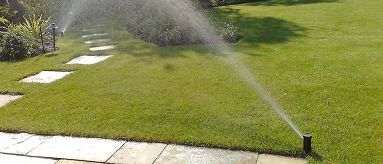 efficient lawn irrigation