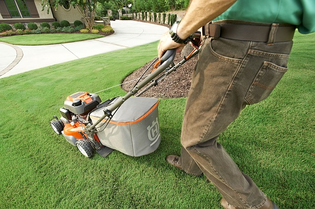 Keep Your Lawn Green During The Summer Heat