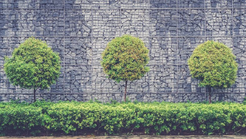 How Clever Landscaping Makes Your Employees More Productive