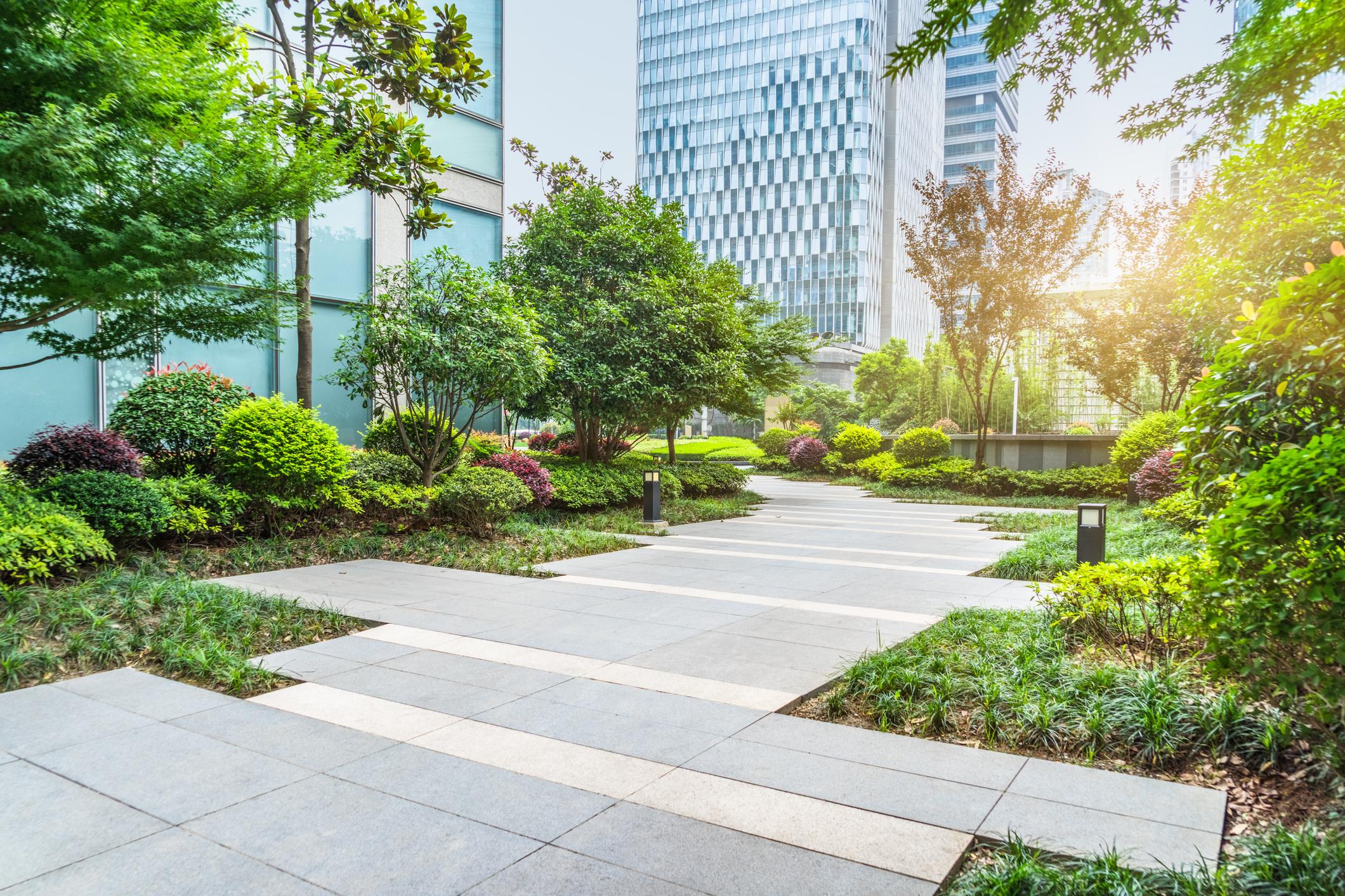 beautiful park between office buildings