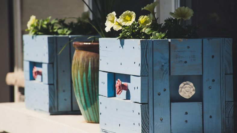 Go Big or Go Home: Our Fave Ideas for Large Container Plantings