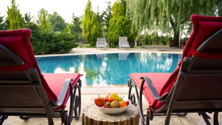 Landscape Around Your Pool: Everything You Need to Know