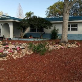 Tampa Bay trusts a quality Landscape Service | Landcrafters