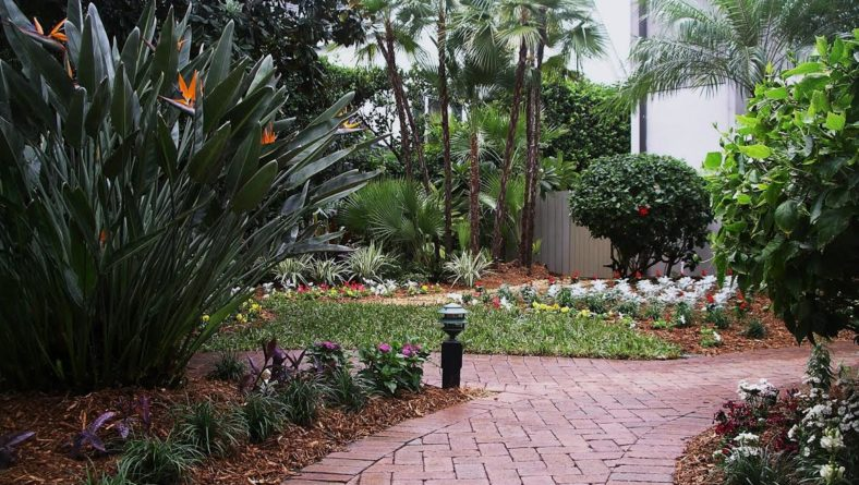 How to Use Mulch to Enhance Your Landscape