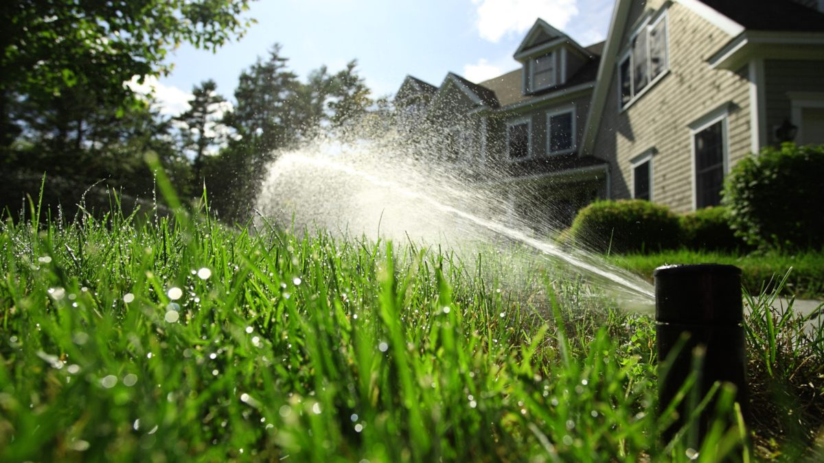 thirsty-turf-irrigation-27063