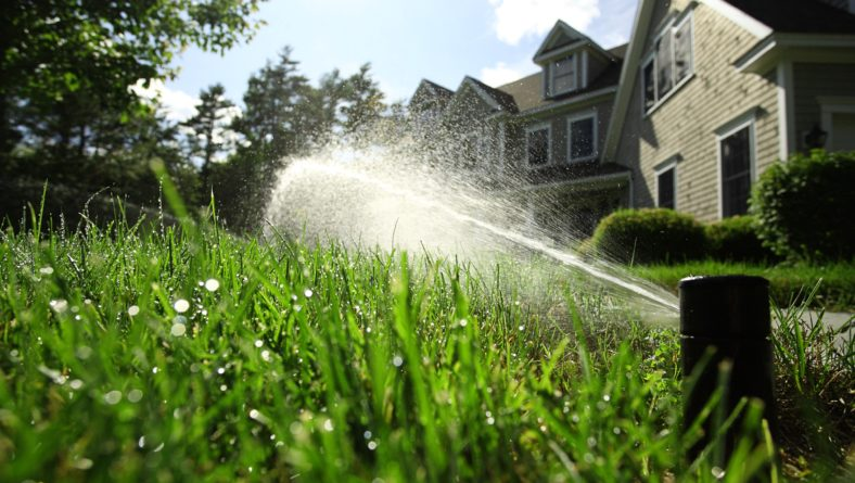 How to Irrigate Your Commercial Landscape During Winter